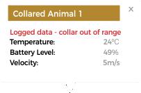 animal collar popup